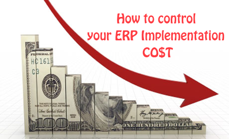 how to reduce your erp implementation cost
