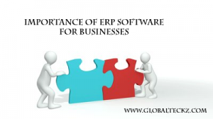 importance of erp software for businesses